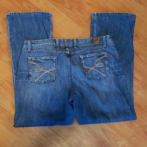 BKE Wendi bootcut plus size jeans